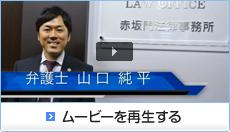 弁護士山口純平についての紹介動画